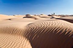 Sand dunes desert of Sahara. South Tunisia Royalty Free Stock Photo