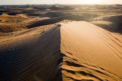 Sand dunes in desert. Sand dunesduring sunset in the desert in the United Arab Emirates royalty free stock photo