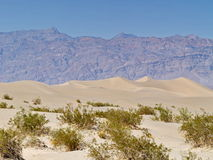 Sand dunes in Desert Valley Stock Image