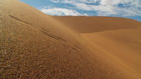 Sand dunes in the desert , warm dry sand under blue sky royalty free stock images