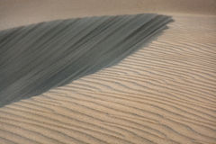 Sand dunes, different textures, Maspalomas, Gran Canaria, Spain Royalty Free Stock Image