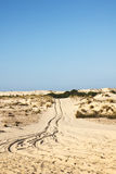 Sand dunes in Donana National Park, Matalascanas,Spain Royalty Free Stock Photography