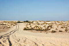 Sand dunes in Donana National Park, Matalascanas,Spain Royalty Free Stock Image