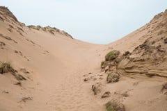 Sand dunes and drift. Deserted sand dunes on the north Devon coast UK Stock Images