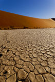 Sand dunes and dry earth Stock Photography