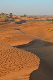 Sand dunes in Dubai desert. A view of the sand dunes in the Dubai desert just before sunset Royalty Free Stock Photos