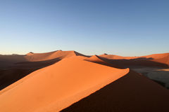 Sand Dunes at Dusk. Numerous sand dunes stretching out into the horizon at dusk in the Namib Desert in Sossusvlei, Namibia Royalty Free Stock Photo