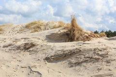 Sand dunes on the Dutch North Sea coast Royalty Free Stock Photo