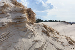 Sand dunes on the Dutch North Sea coast Royalty Free Stock Images