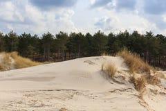 Sand dunes on the Dutch North Sea coast Stock Photos