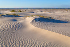 Sand dunes on Dutch sea coast Royalty Free Stock Photography