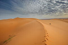 Sand dunes of Erg Chebbi, Morocco Royalty Free Stock Photo