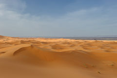 Sand dunes of Erg Chebbi, Morocco Royalty Free Stock Images