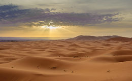 Sand dunes of Erg Chebbi, Morocco Royalty Free Stock Photography