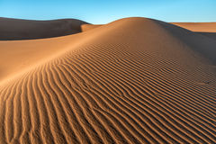 Sand dunes in Erg Chigaga Stock Photos