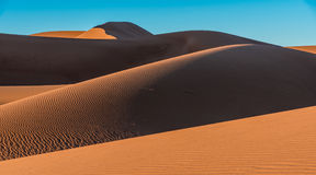 Sand dunes in Erg Chigaga. With shadows, Morocco Stock Image