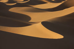 Sand dunes in evening light. Desert sand dunes in evening light with shadows Stock Photo