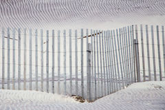 Sand dunes and fence abstract pattern Stock Photo