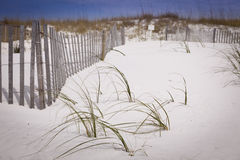 Sand Dunes and Fence at the Beach Royalty Free Stock Photo