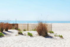 Sand dunes and fence. White sand, grass, and wooden fence with view of ocean Stock Image