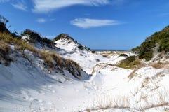 Sand dunes in Florida panhandle. Beautiful white sand dunes with vegetation in the Florida panhandle royalty free stock images