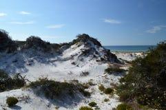 Sand dunes in Florida panhandle. Beautiful white sand dunes with vegetation in the Florida panhandle stock photography