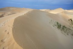 Sand Dunes and Foot Prints Royalty Free Stock Photos