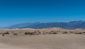 Sand Dunes in front of Mountains Stock Images