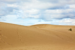 Sand dunes at Fuerteventura Royalty Free Stock Photos