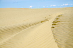 Sand dunes. Golden curved sand dune with blue sky Royalty Free Stock Photo