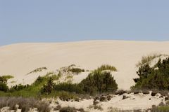 Sand Dunes and Grass Royalty Free Stock Photography