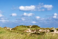 Sand Dunes with Grass stock photography