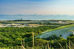Sand Dunes and Grass of the Provincelands Cape Cod MA US. Royalty Free Stock Images