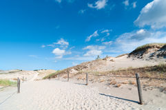 Sand Dunes And Grass Vegetation Background Stock Photos