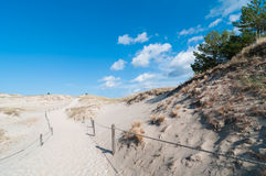 Sand Dunes And Grass Vegetation Background Royalty Free Stock Photos
