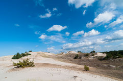 Sand Dunes And Grass Vegetation Background Royalty Free Stock Images