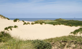 Sand dunes and grasses at Formby beach Royalty Free Stock Images