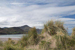 Sand dunes and grasses at Rosbehy Point, County Kerry Stock Photos