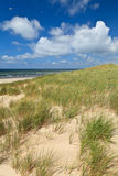 Sand dunes with helmet grass Royalty Free Stock Photo