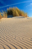 Sand dunes with helmet grass Stock Image