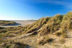 Sand dunes with helmet grass Stock Photo