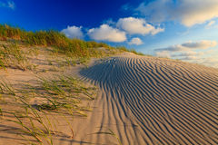 Sand dunes with helmet grass Royalty Free Stock Images