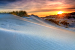 Sand dunes with helmet grass Stock Photos