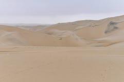 Sand dunes in the Huacachina desert, Peru Royalty Free Stock Image