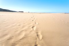 Sand dunes with human footprints near seaside. Hot sunny day in deserted place.  royalty free stock photo