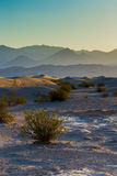 Sand dunes illuminated with the golden light with mountains behind in a hazy day Stock Photos