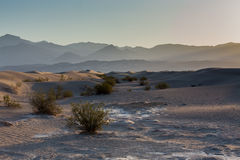 Sand dunes illuminated with the golden light with mountains behind in a hazy day Stock Photography