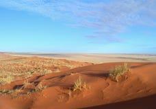 Sand Dunes In The Kalahari Desert Stock Image