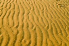 Sand dunes in India Stock Photo