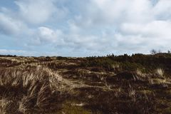 Sand dunes on the island of Amrum in spring. On a cloudy, atmospheric day at low tide. Idyllic picturesque landscape with dry grass. North Frisia, Schleswig stock photo